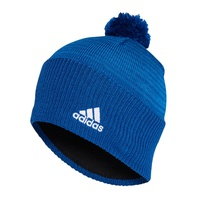 Шапка Аdidas Graphic Beanie 073