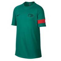Футболка Nike JR CR7 Dry Academy Top 348