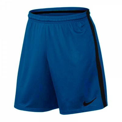 Шорты Nike Squad Football Short 435