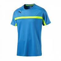 Футболка игровая Puma IT evoTraining Tee T-Shirt 52